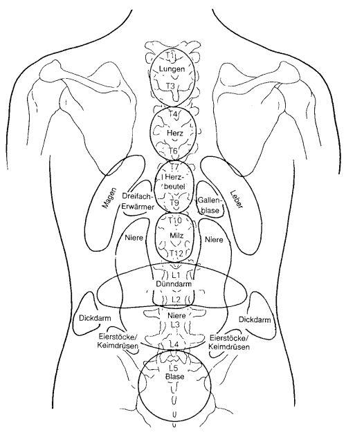 Die Osteochondrose des Brustteiles die Symptome rechts